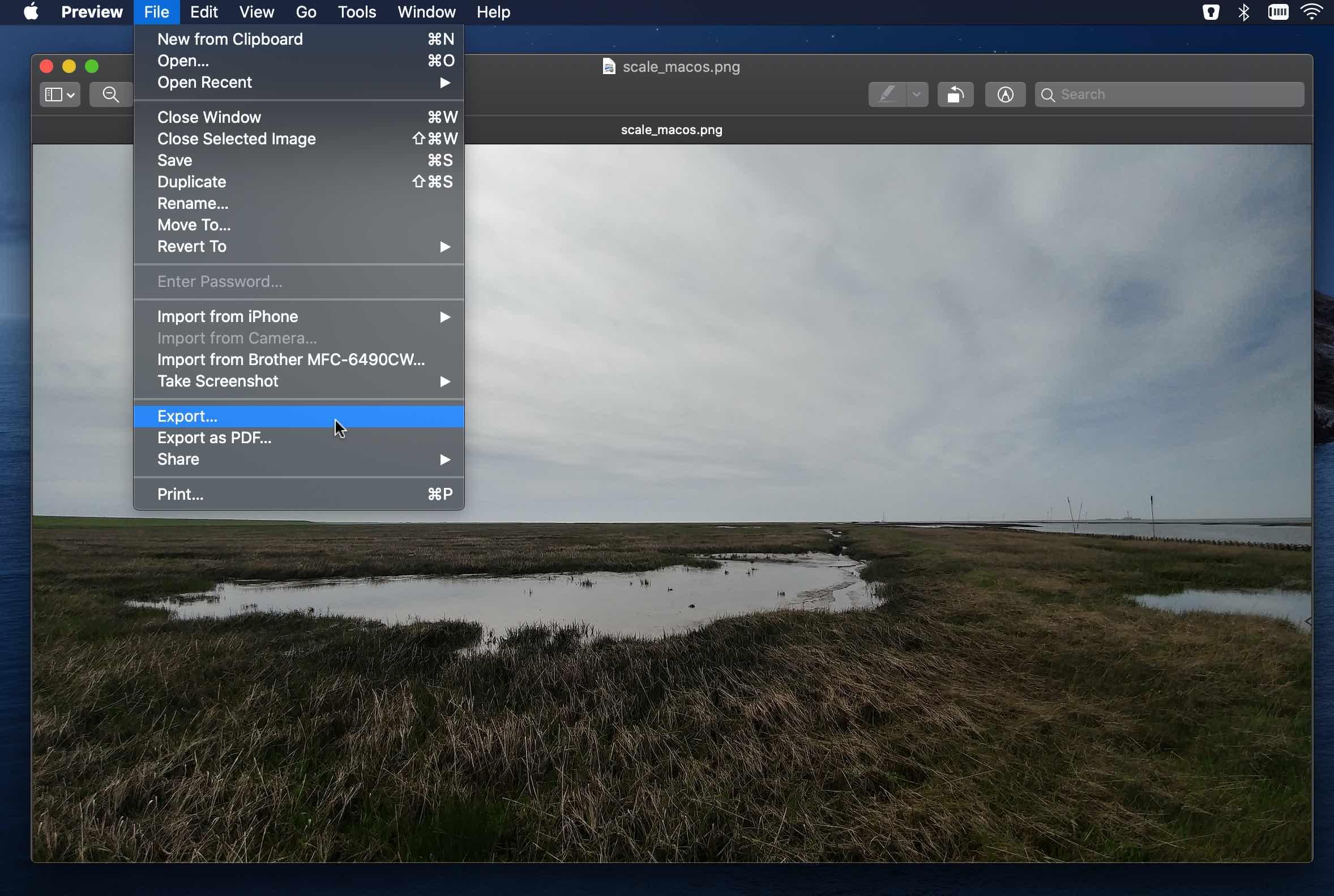 Exportieren eines Fotos in MacOS Preview.