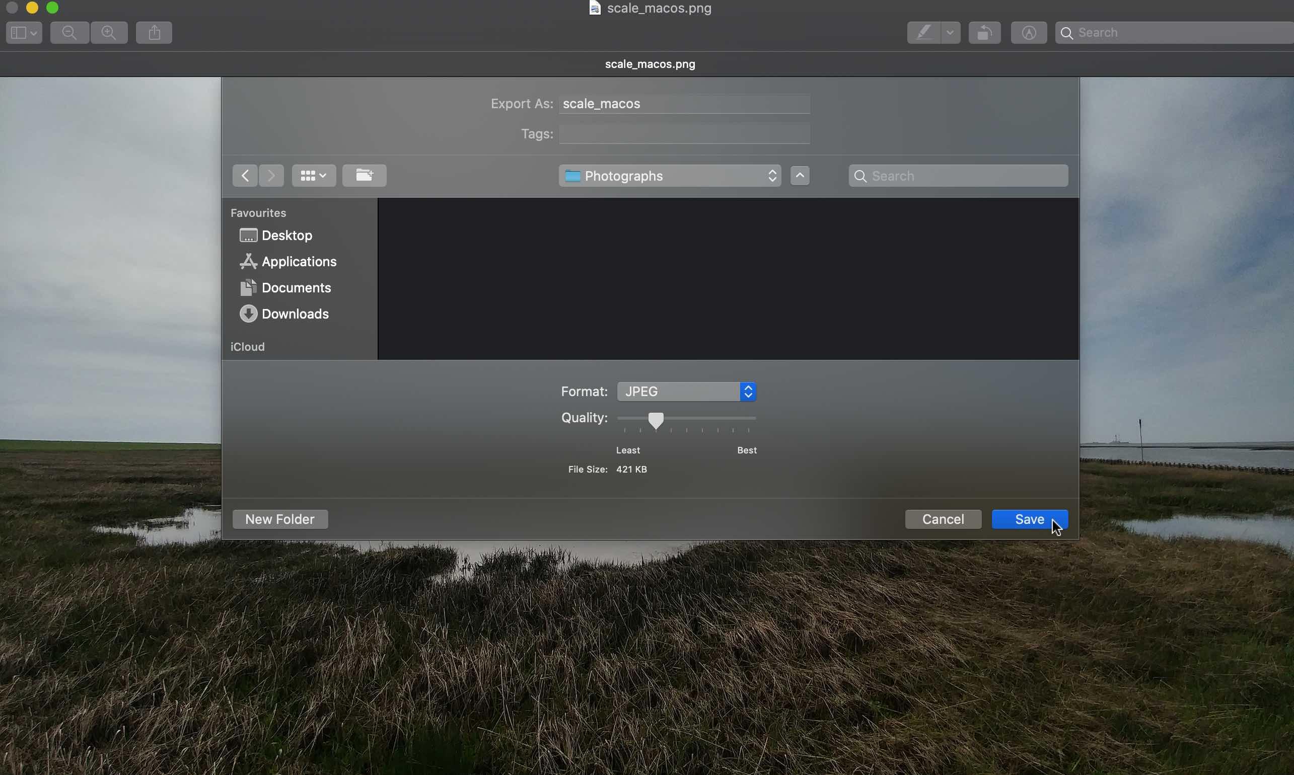 Einstellen von Qualität und Format eines Fotos unter MacOS.