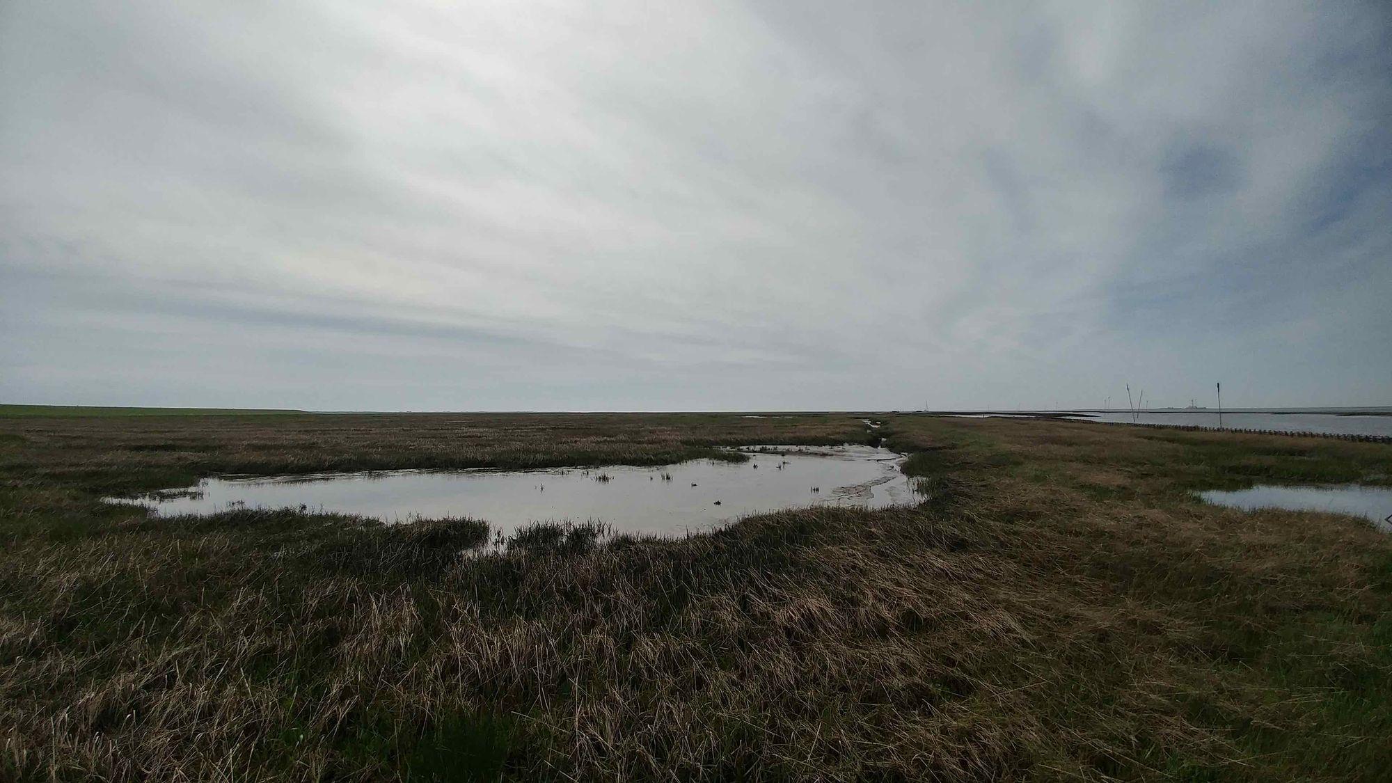 Kleiner See in einer Nordsee Landschaft im Format JPEG.